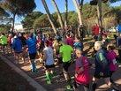 New Balance 880v6: Las 880 iniciando una media maratón.