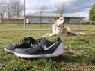 Nike Air Zoom Odyssey 2: Nike Odyssey 2 - Ready to go