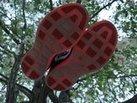 Nike LunarTempo 2: Horma bastante universal para estas Nike LunarTempo 2
