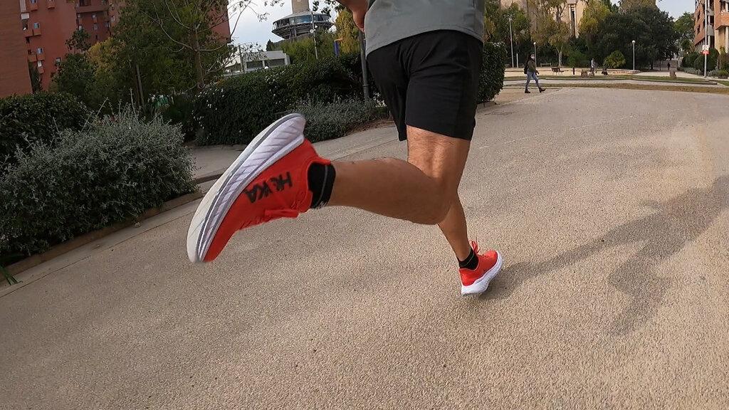 Una de las zapatillas referentes para la media y larga distancia